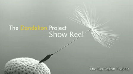 the dandelion project show reel