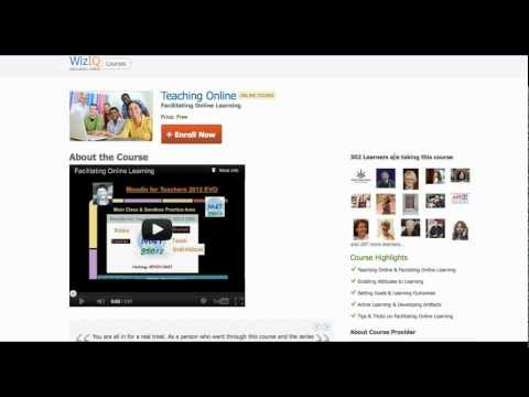 Teaching Online: Facilitating Online Learning
