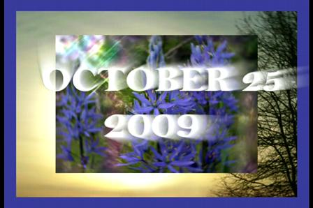 October 25 2009