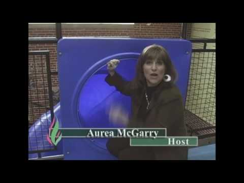Sizzler video with Emmy nomination for Aurea McGarry