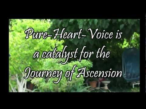 Pure Heart Healing Voice For Humanity