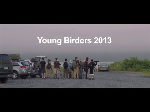 Young Bird Lovers - They Arrived As Strangers, But Departed As Lifelong Friends