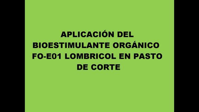 APLICACIÓN DEL BIOESTIMULANTE ORGÁNICO FO-E01 EN PASTO DE CORTE