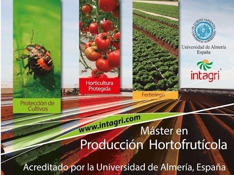 Maestría en Producción Hortofrutícola - Intagri
