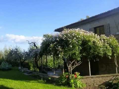 Yoga & Wellness in Bella Italia, In Sabina, 04/2012