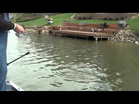 Bluegill,Bass and Crappie fishing