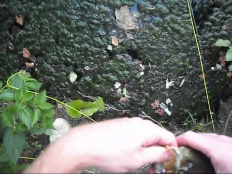 Hat Cam. Fly fishing NJ 2