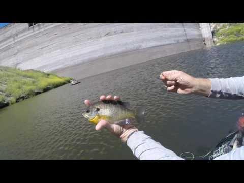 Lake Barrett on the Fly