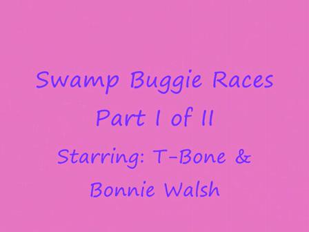Swamp Buggy Races Naples Florida