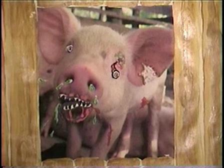 Zombie Pig Recant
