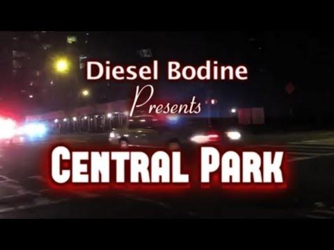 """Violence 101: """"Central Park"""""""