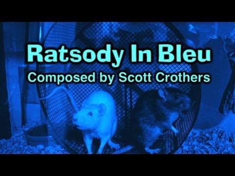 Ratsody In Bleu
