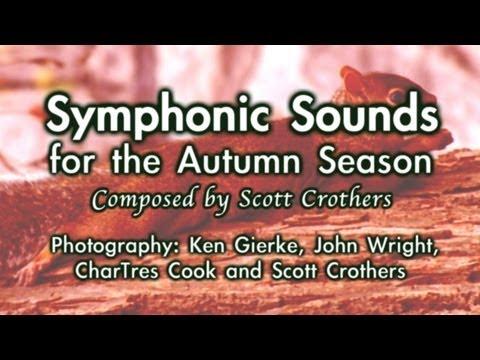 The Autumn Season (Photo Collaboration)