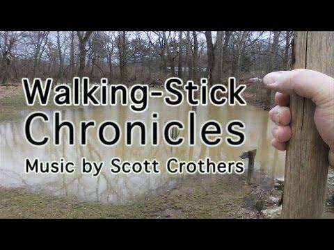 Walking-Stick Chronicles