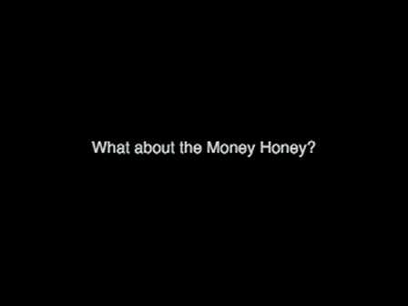 OOOOBY Store Money Structure