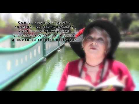 Epistolario IV - Poeta Victoria Romero Silva