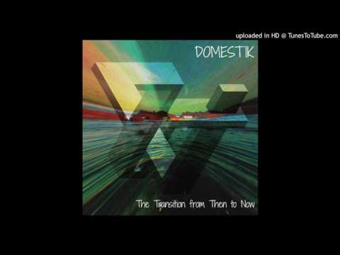 Domestik - The Transition from Then to Now