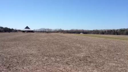 STOL CH 750 C-KIM on the farm strip