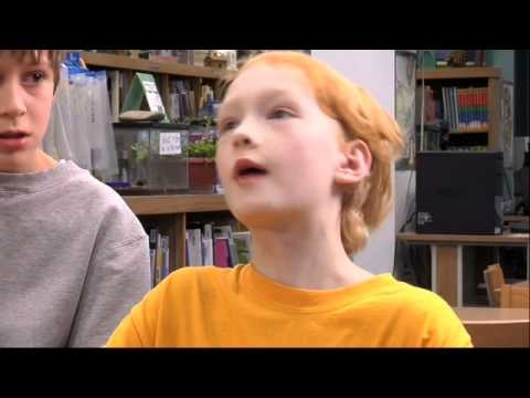 World Peace and other 4th-Grade Achievements Trailer