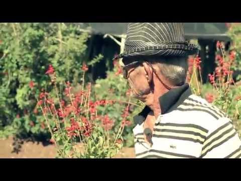 Agricultura Urbana e Periurbana em São Paulo - Episódio 2