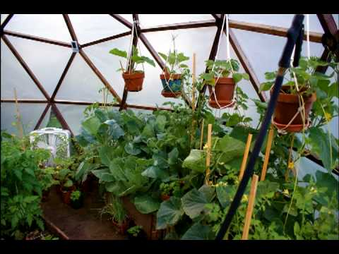 Geodesic Urban Greenhouse