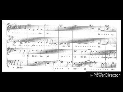 Sicut Cervus (Palestrina) - Corpus Christi Choir