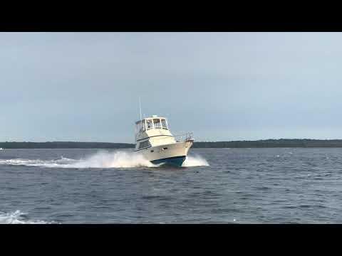Tenacious Cruising - 36 TSF