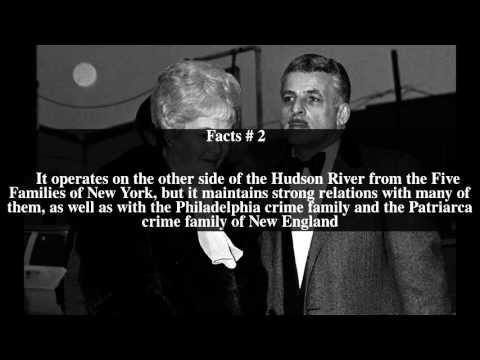 DeCavalcante crime family Top # 5 Facts