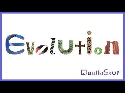 Qualia Soup: Evolution