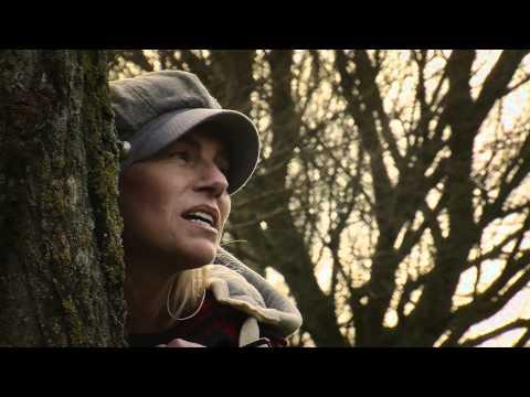 Terhi Ikonen - Diaries Of A Mending Heart [OFFICIAL MUSIC VIDEO]