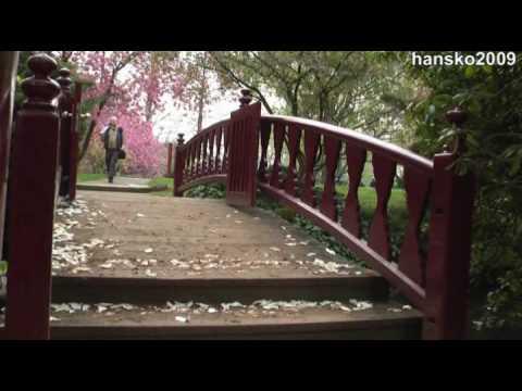 Japanese garden @ Leverkusen