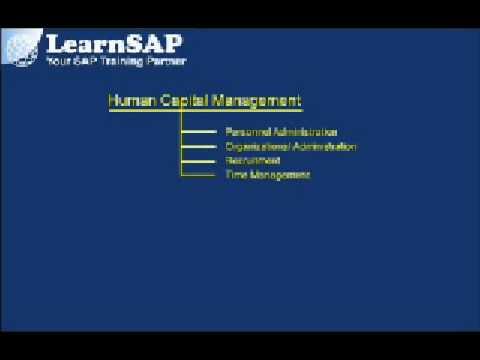 SAP HR Overview ( Part 1 )