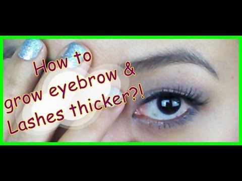 How to Grow Eyebrows & Eye Lashes Thicker! Baby Bloopers!