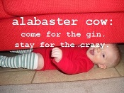 ericka @ alabaster cow
