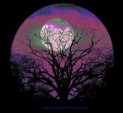 Moonrise Blues