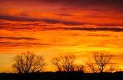 Longmont sunrise