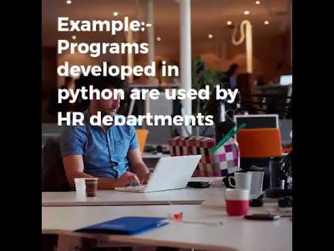 Best Python Development Company in usa