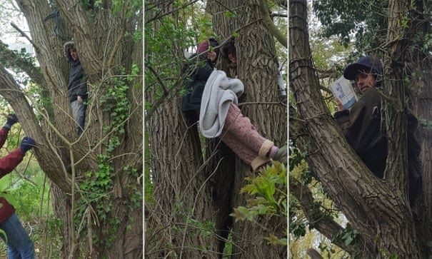 Extinction Rebellion activists claim victory in HS2 tree protest