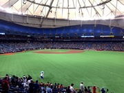 View from the Outfield