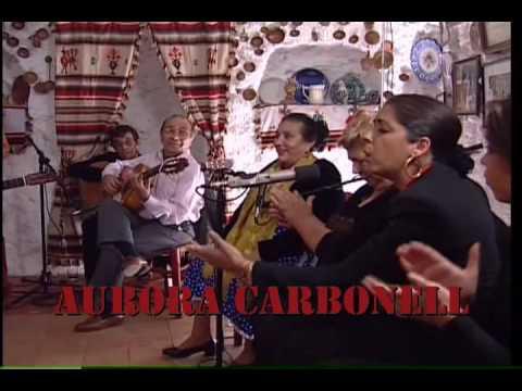 Puro Flamenco
