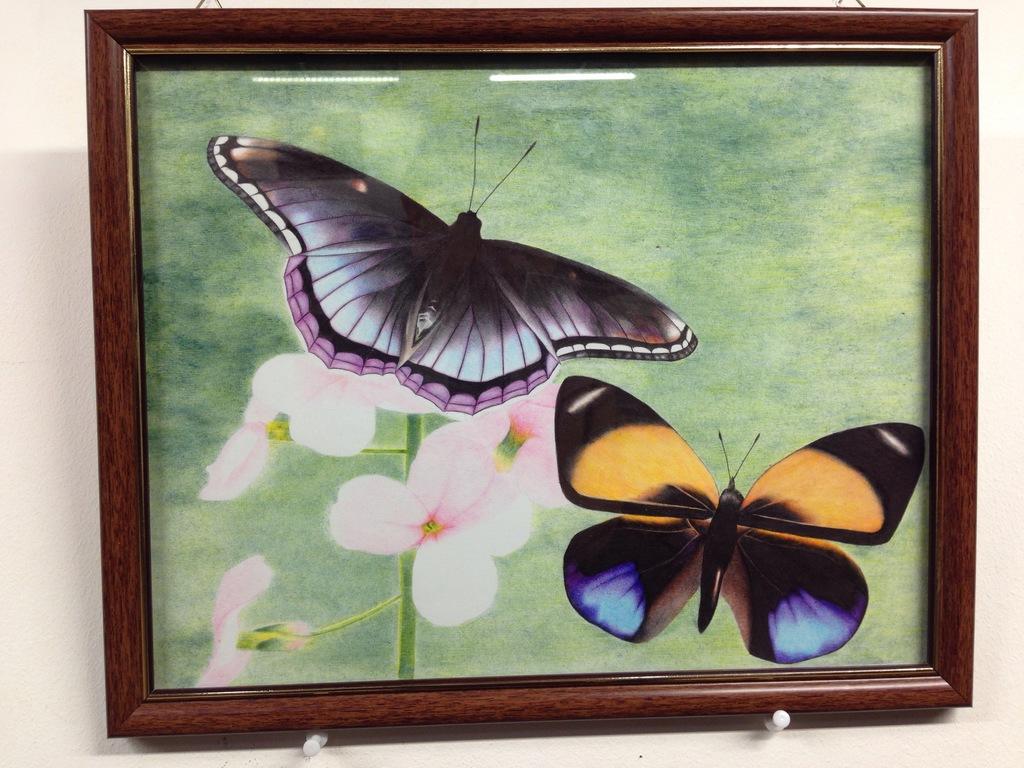 ლევან კუტაძის გამოფენა საქართველოს ეროვნულ ბიბლიოთეკაში, biblioTeka, Qwelly, ფოტობლოგი, ბიბლიოთეკა, ქველი
