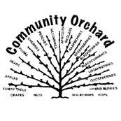 New Community Orchard in Seven Sisters, N15