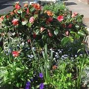 Warham Winter Planting