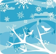 Markfield Park Winter Celebration
