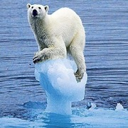 Climate Change and the Media: Realism or Distortion?