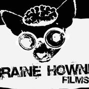 Braine Hownd Film Awards 2013