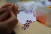 Beadwork Jewellery Making Workshop for Children Age 8+