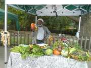 Wood Green Local Food Conference