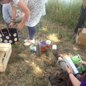 Free PACT Foraging Walk: fruits, with Gemma Harris