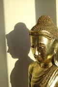 Asana Pranayama Meditation - Turnpike Lane